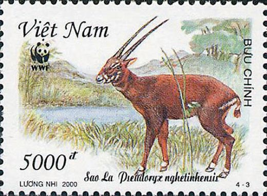 A stamp portraying a Saola