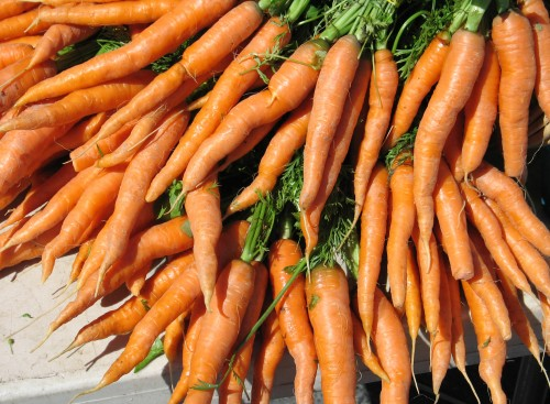 Carrots are a popular vegetable