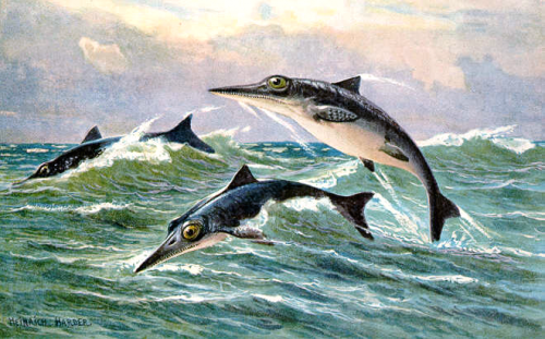 A painting of the Ichthyosaur by H. Harder