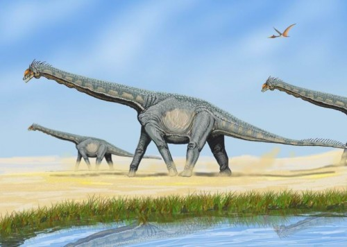 Were these one of the last dinosaurs to roam the earth?
